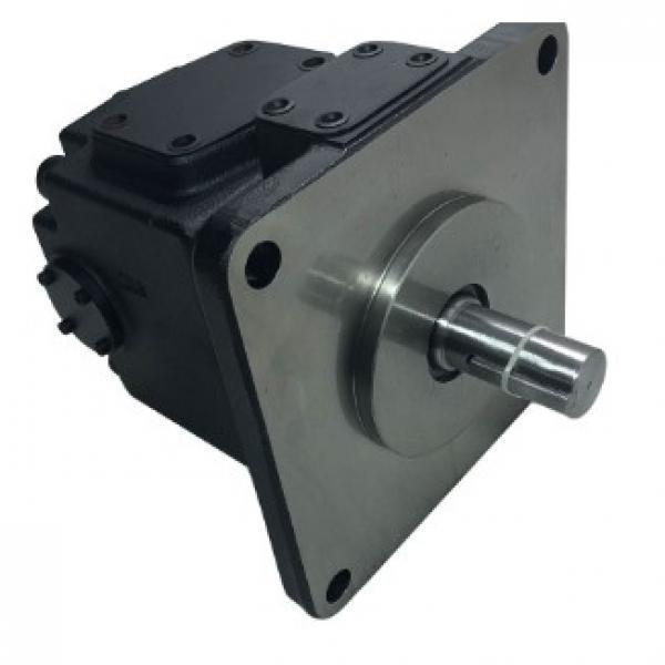 Vickers PV063L1E1B3NUPZ+PV023L1E1T1NUP Piston Pump PV Series #3 image