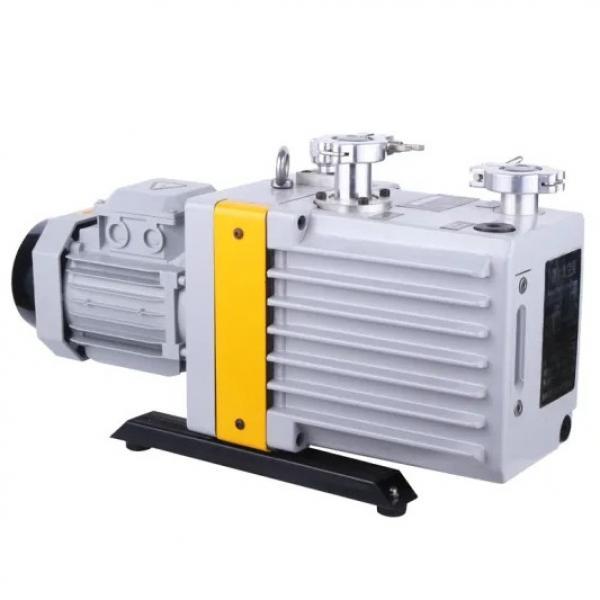 Vickers PV046R1K1T1NDLZ4545 Piston Pump PV Series #1 image